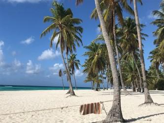 Playa del Canto Isla Saona