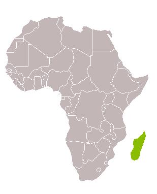 Madagascar essències del sud