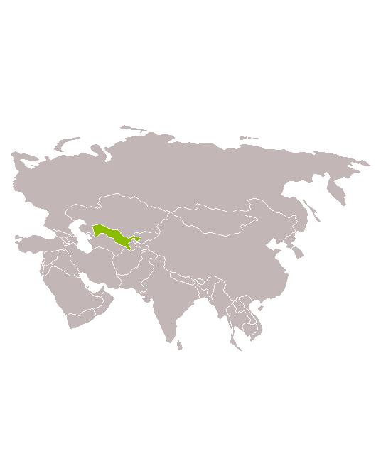 Uzbekistan país Les Cúpules Blaves