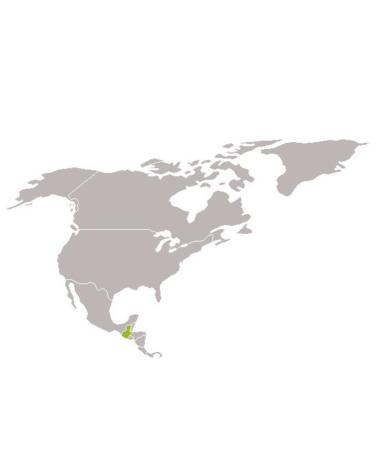 Guatemala cultural i antropològica amb Marc Espín
