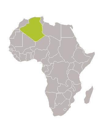 Algèria, Cap d'Any als laberints de sorra