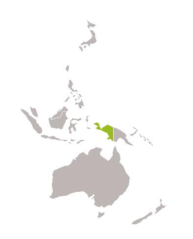 Papua Trek
