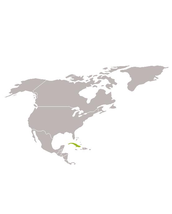 Cuba de Sierra Maestra a L'Havana