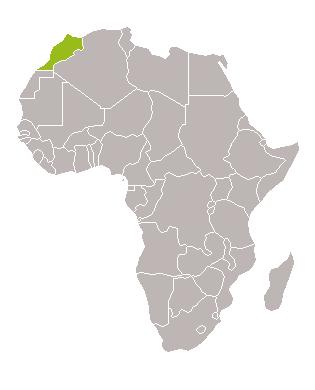 Caravana Desert Marroc - 9 dies